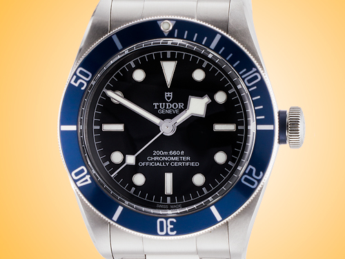 Tudor Heritage Black Bay Men's Automatic Stainless Steel Watch M79230B-0001