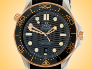 Omega Seamaster Diver 300 M Co-Axial Master Chronometer Stainless Steel / 18K Gold Automatic Men's Watch 210.22.42.20.01.002