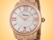 VENUS of Switzerland Impetus Collection Date Ladies Watch Model: VE-3116A6-4R4-B6